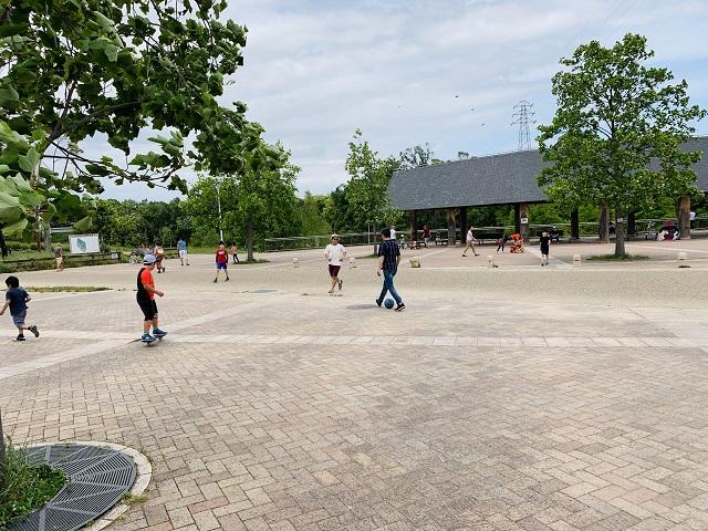 山田池公園遊び場